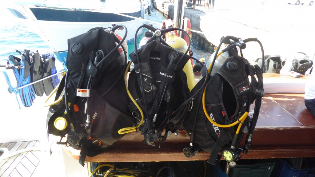 Seagate Hurghada Diving - Red Sea - Egypt - daily diving