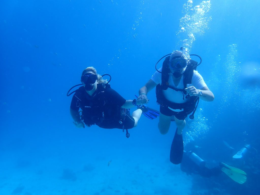 Seagate Hurghada Diving - Red Sea - Egypt - try-dive