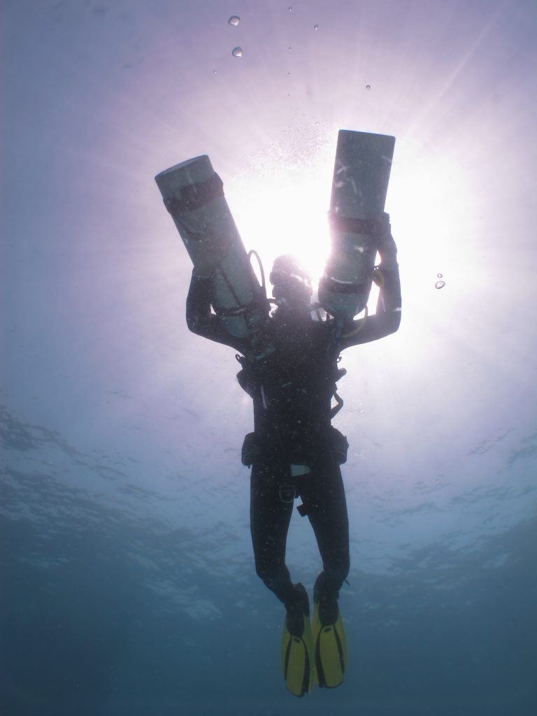 Diving Hurghada Seagate - Padi divecourse