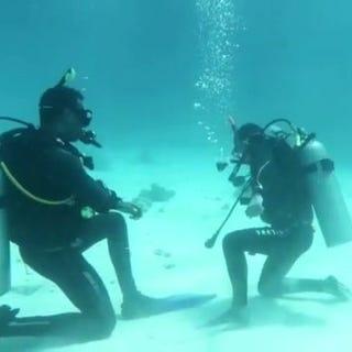 Diving Hurghada - Divecourse - Red Sea - Divecenter - Diveschool